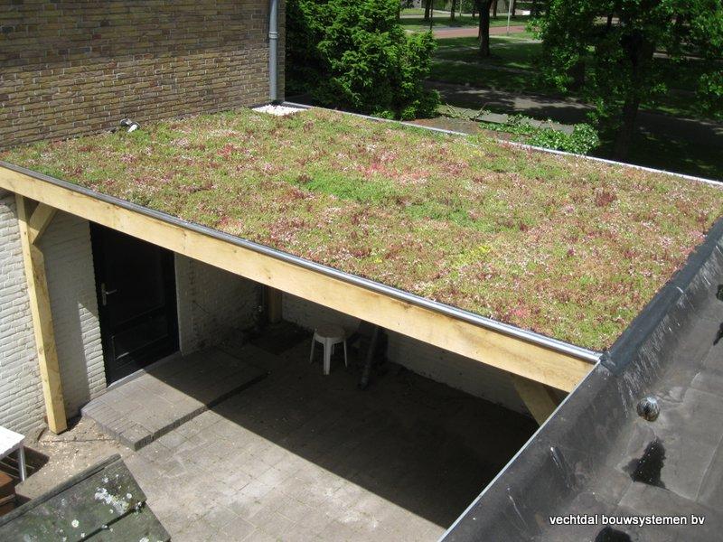 04-Houten_overkapping_met_groendak_(1) - Eikenhouten tuinhuis en overkapping met groendak opgeleverd in Zwolle.
