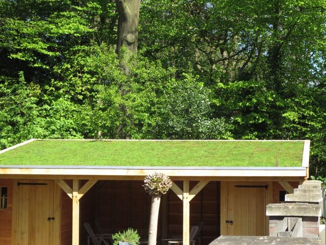 36_Authentiek_eikenhouten_tuinhuis - Subsidie op groendak. Bijgebouwen/tuinhuizen/overkappingen of landelijke schuren.