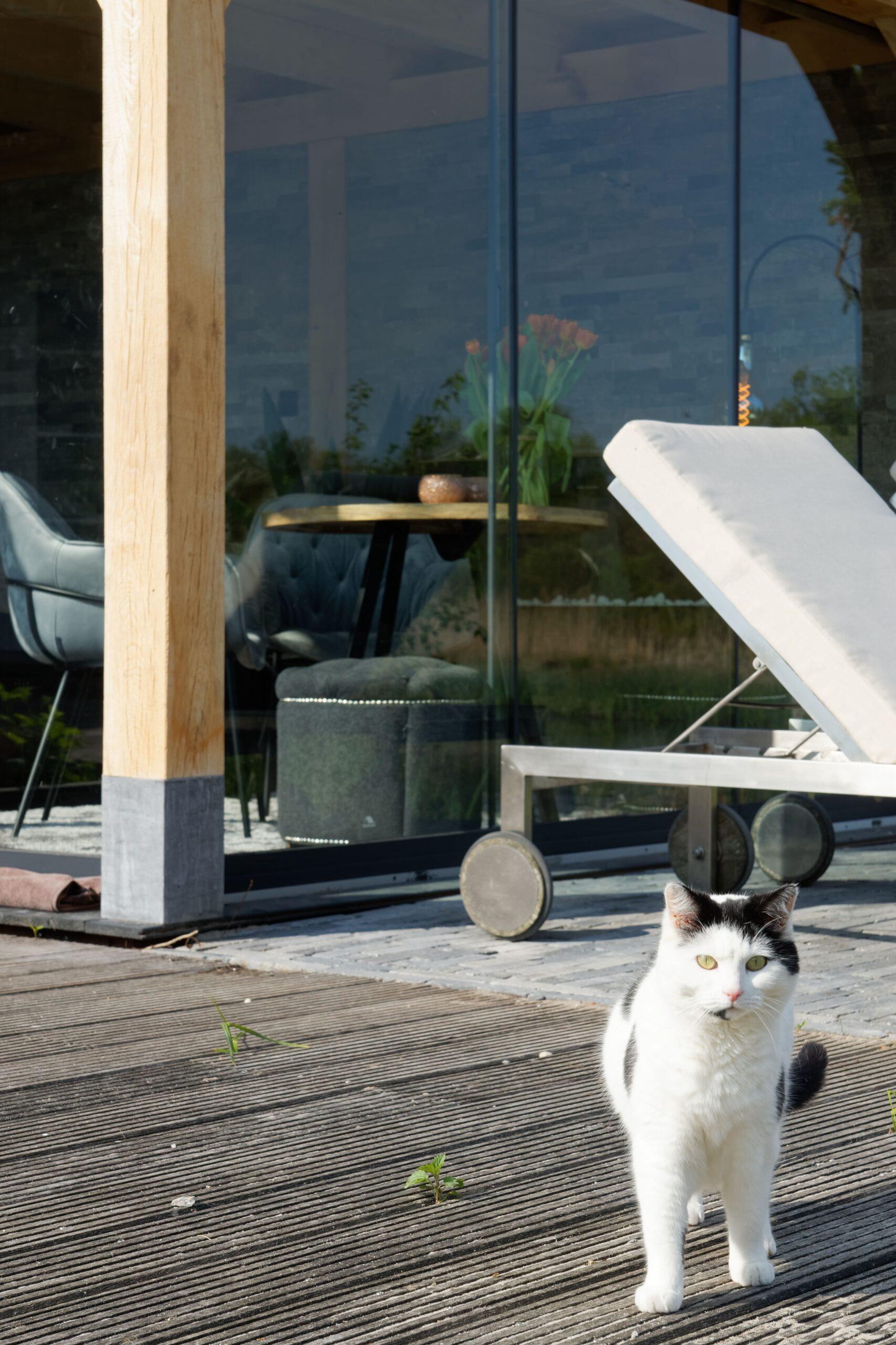 Luxe-tuinkamer-aan-het-water-17-scaled - Project Kortenhoef: Luxe tuinkamer aan het water